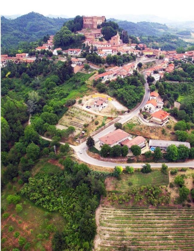 Monticello copy